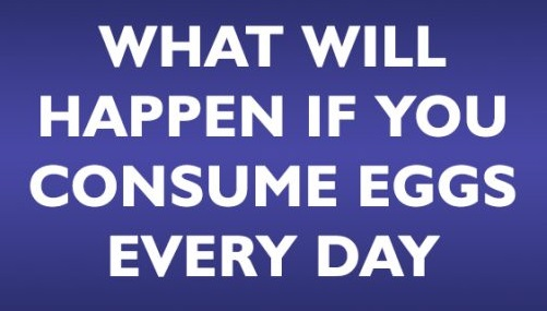 What Will Happen If You Consume Eggs Every Day