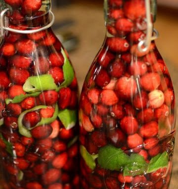 .cranberry lime vodka.