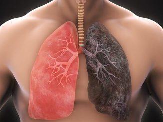1 Fincan… Akciğerler ve Solunum Sistemi İçin Çay!
