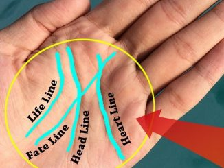 If You Have A Letter 'M' On The Palm Of Your Hand, THIS Is What It Means