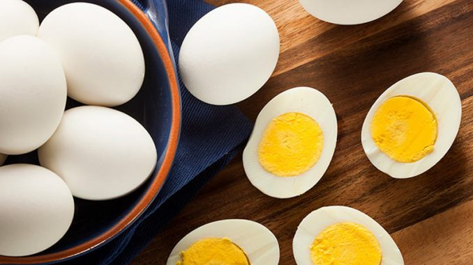 BOILED EGG DIET – LOSE 20 POUNDS IN JUST 2 WEEKS