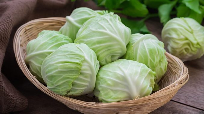 10 Excellent Reasons To Start Eating More Cabbage (Number 10 Will Shock You)