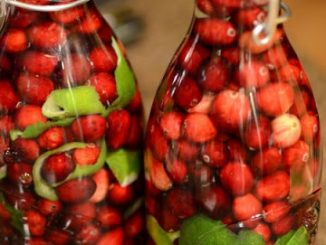 .cranberry lime vodka.